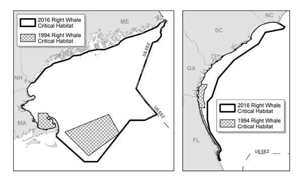 Nearly 40,000 square miles of protection granted for last 500 Right Whales