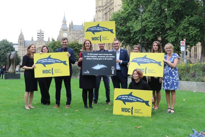 What we must do to protect UK dolphins, porpoises and whales from fishing gear after Brexit