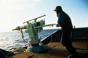 Norwegen tötet erste Wale der Saison