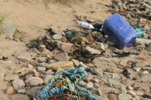 Umweltverbände veröffentlichen Positionspapier zum 7. Umweltaktionsprogramm