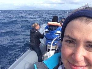 Ein Sommer auf dem Atlantischen Ozean