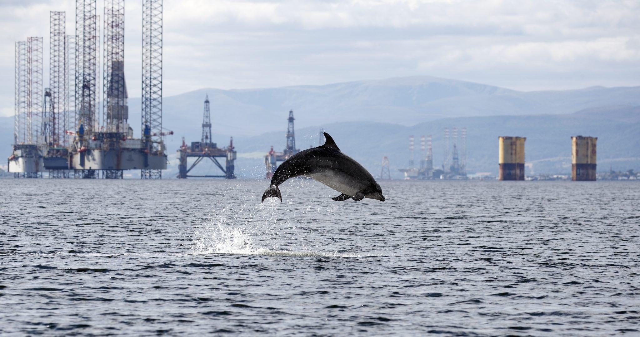 Ölplattform Delfin