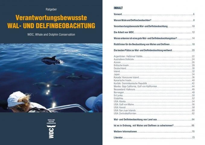 WDC-Ratgeber Walbeobachtung: Inhalt