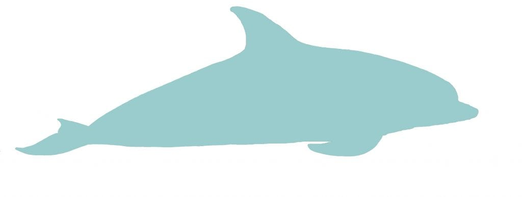 Oceanic dolphin silhouette