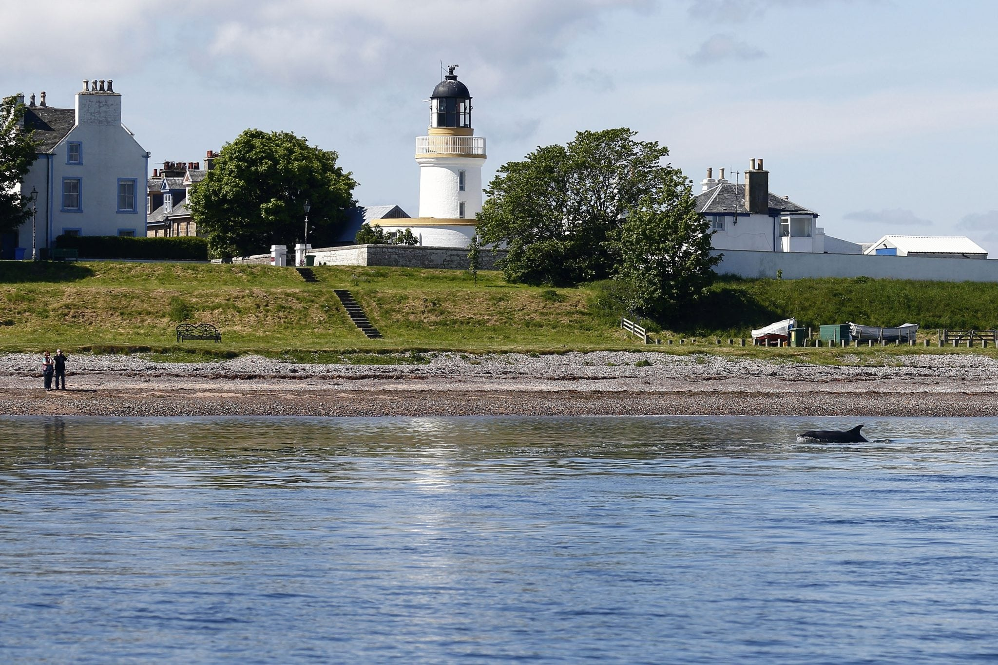 Scottish Dolphin Centre 2