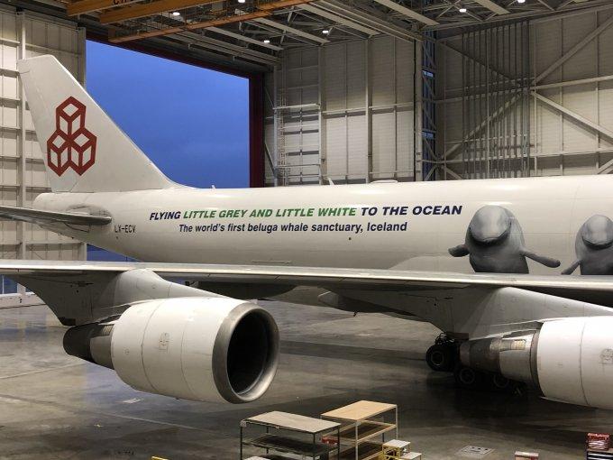 Cargolux-Flugzeug für den Beluga-Transport