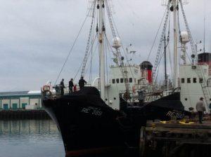 Walfangschiff in Island, Hvalur