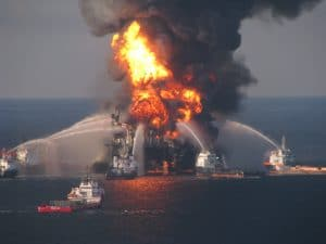 Ölpest vor Frankreichs Küste bedroht Meeressäuger