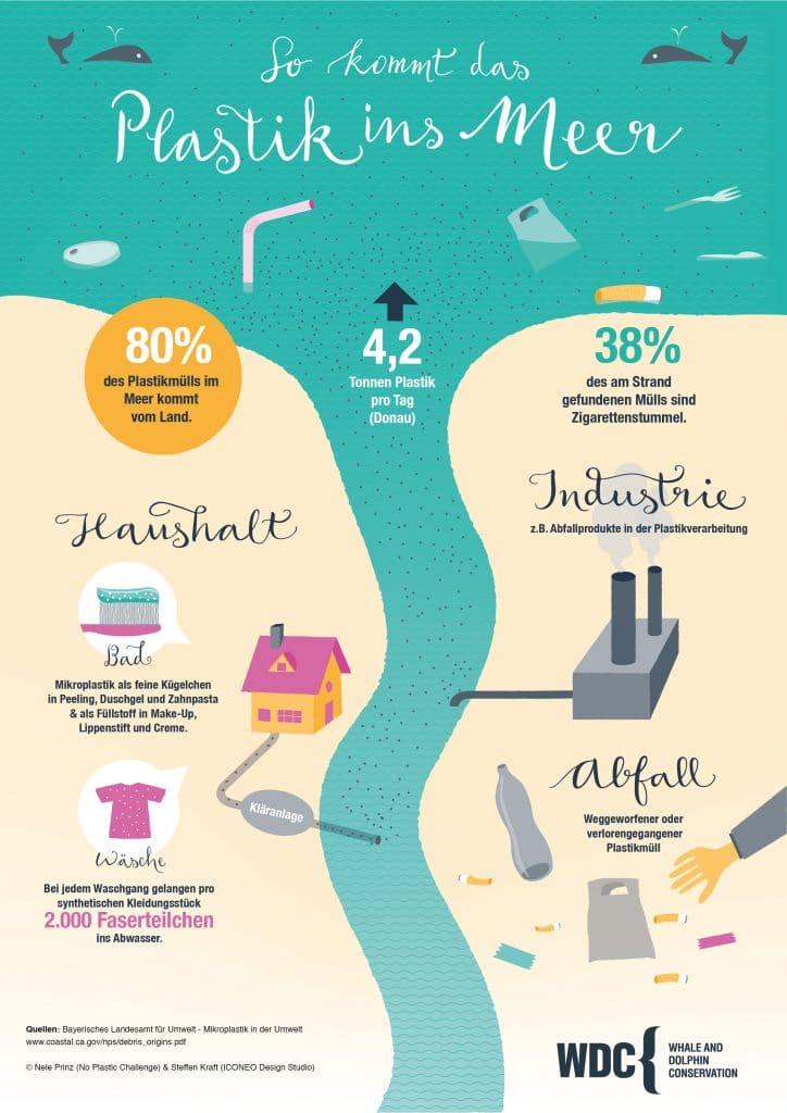 Infografik - wie kommt das Plastik ins Meer