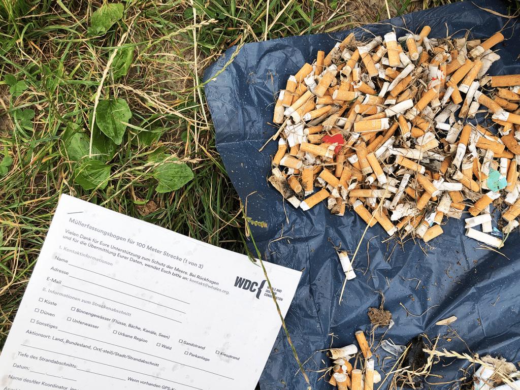 Müllerfassungsbogen WDC mit Zigarettenkippen