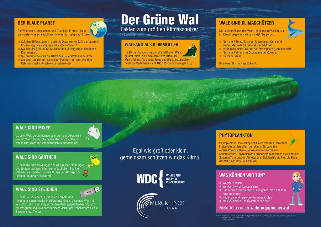 Infoposter für Schulklassen zum Klimawandel - Grüner Wal