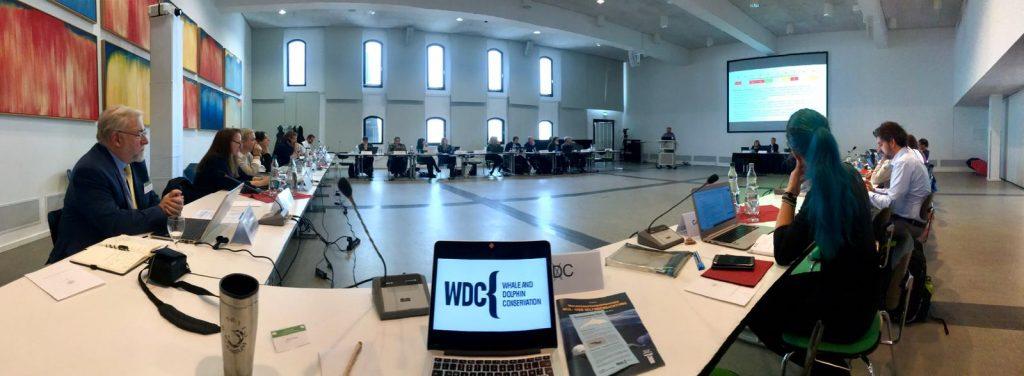 WDC beim Treffen des Kleinwalschutzabkommens ASCOBANS