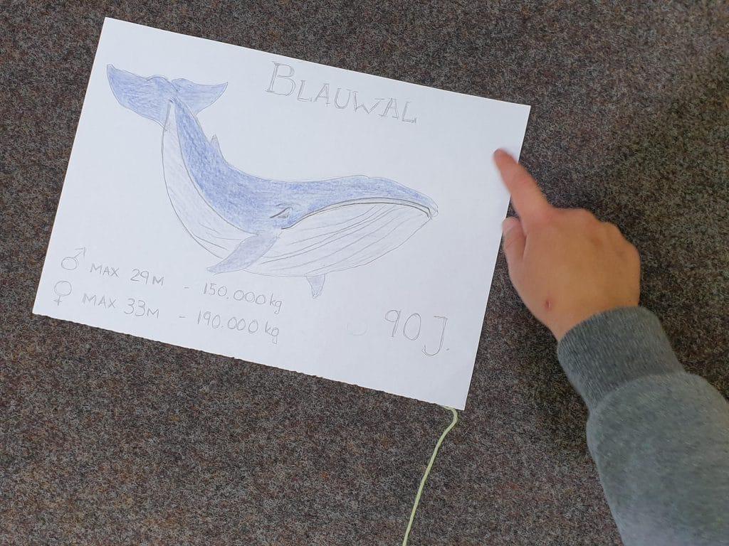 Gemaltes Kinderbild eines Blauwals