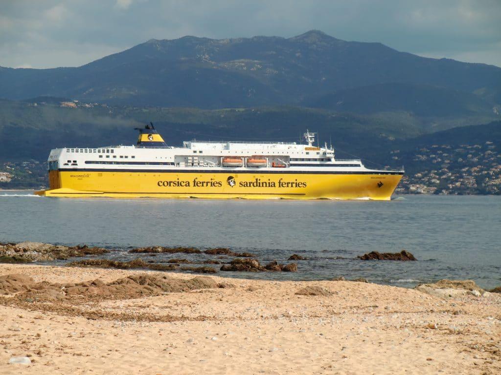 Tempolimit für Schiffe: Vorteile für Wale, Klima und Natur