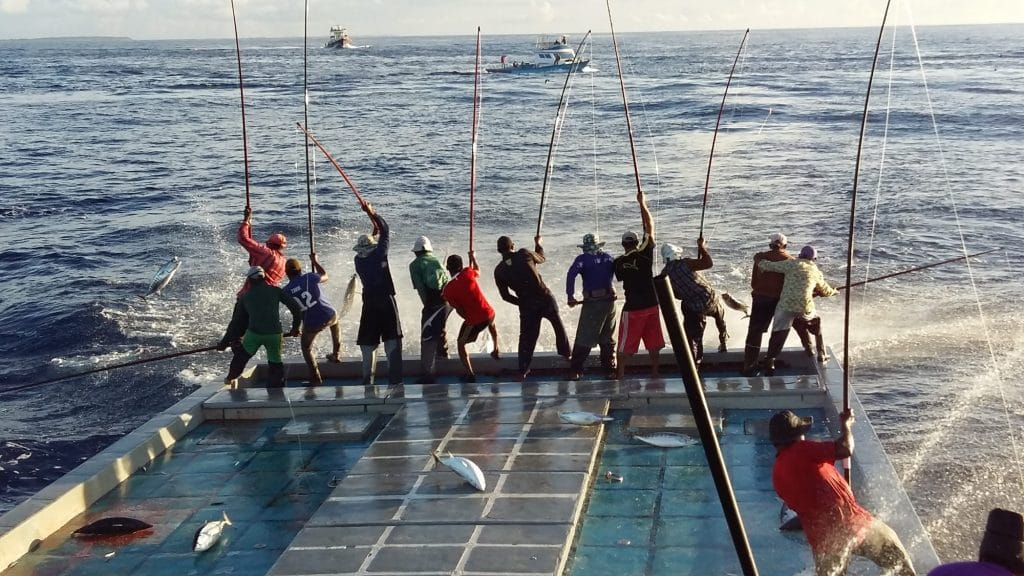 Angelrutenfischerei, Malediven, 2016 (C) IPNLF