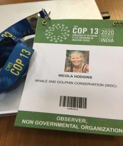 Walschutz in Aktion: WDC auf der CMS Konferenz