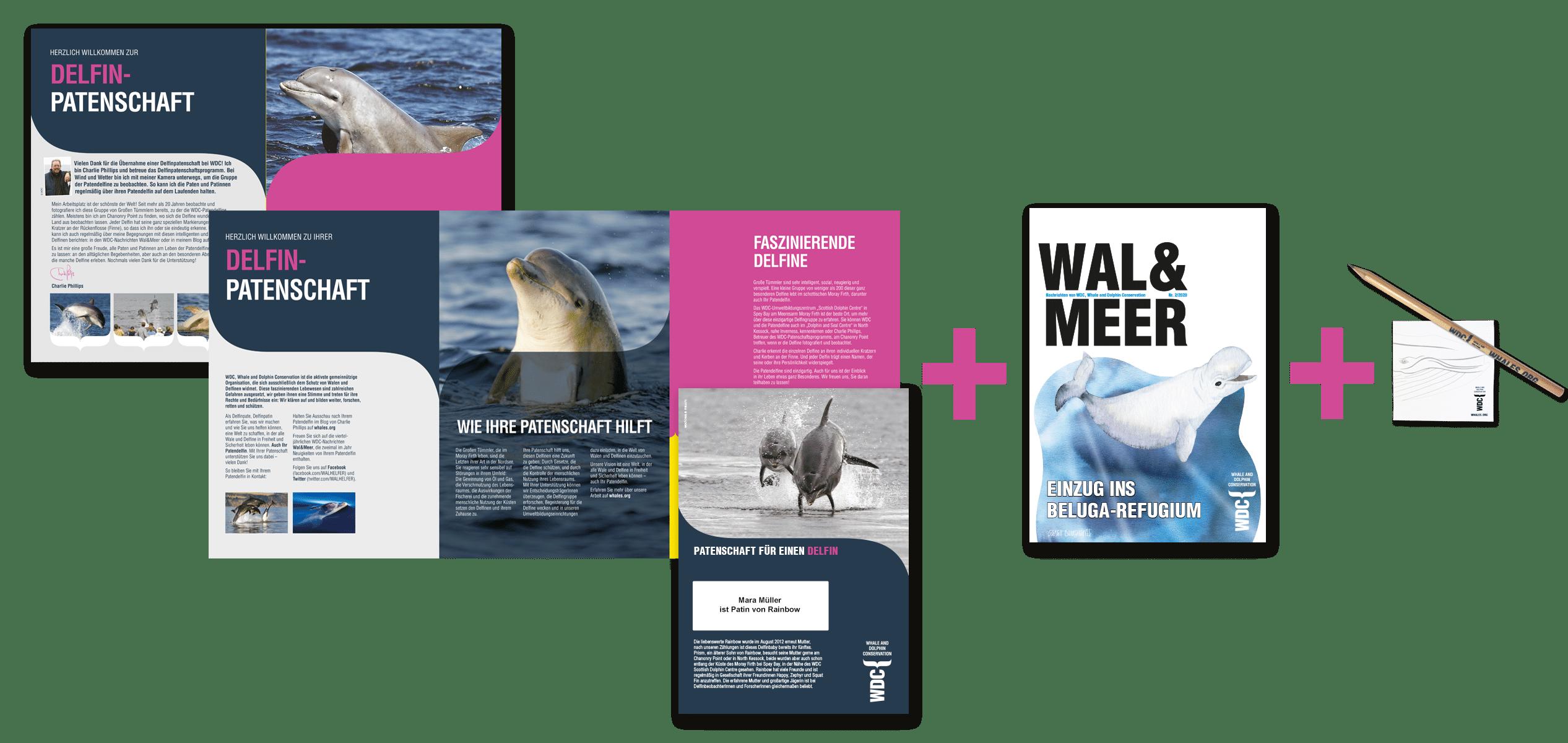 Patenschaftspaket Delfin