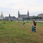 Clean-Up Dresden Sammeln mit Skyline