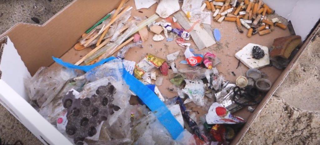 Ergebnis nach einer halben Stunde Sammeln, bei einem WDC Clean-Up auf Sylt. (C) heylilahey