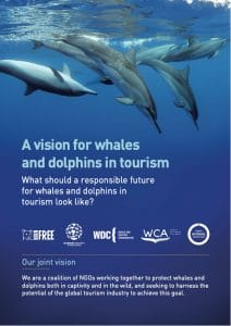 vision-for-whales-and-dolphins-in-tourism-212x300