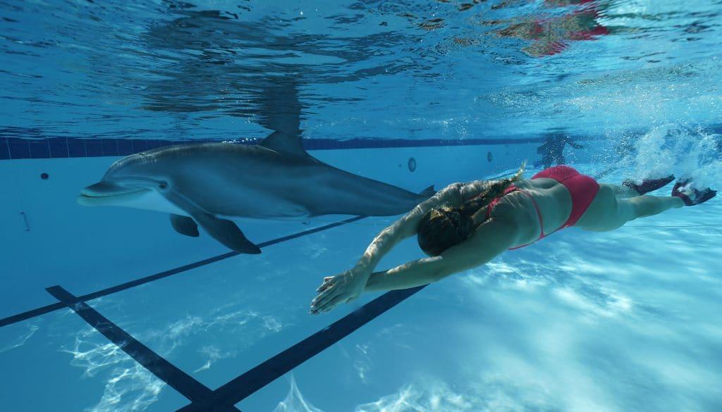 Der Roboter-Delfin mit einer Schwimmerin. (C) Edge Innovations