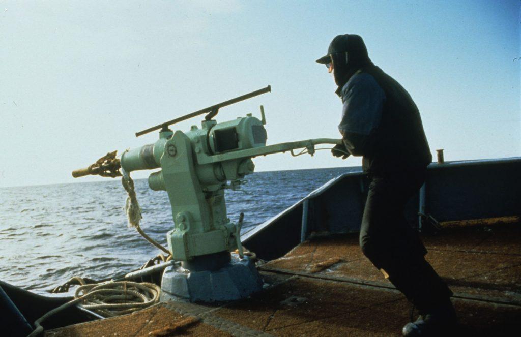 Harpunen-Schütze auf Walfangschiff (C) Mark Votier