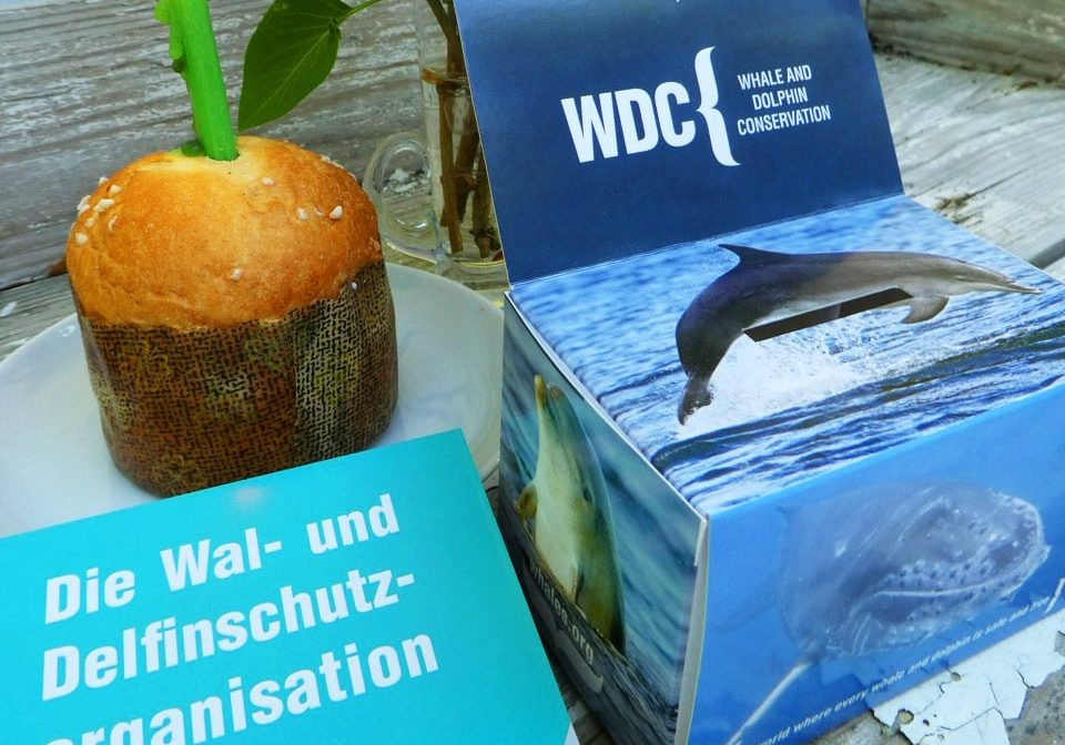 Spendenaktion für Whale and Dolphin Conservation (WDC)