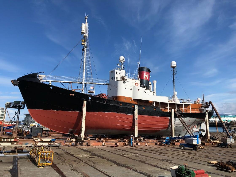 Icelandic whaling report raises concerns